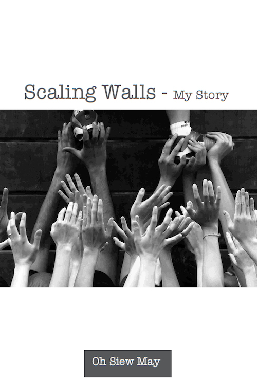 Scaling Walls English Cover