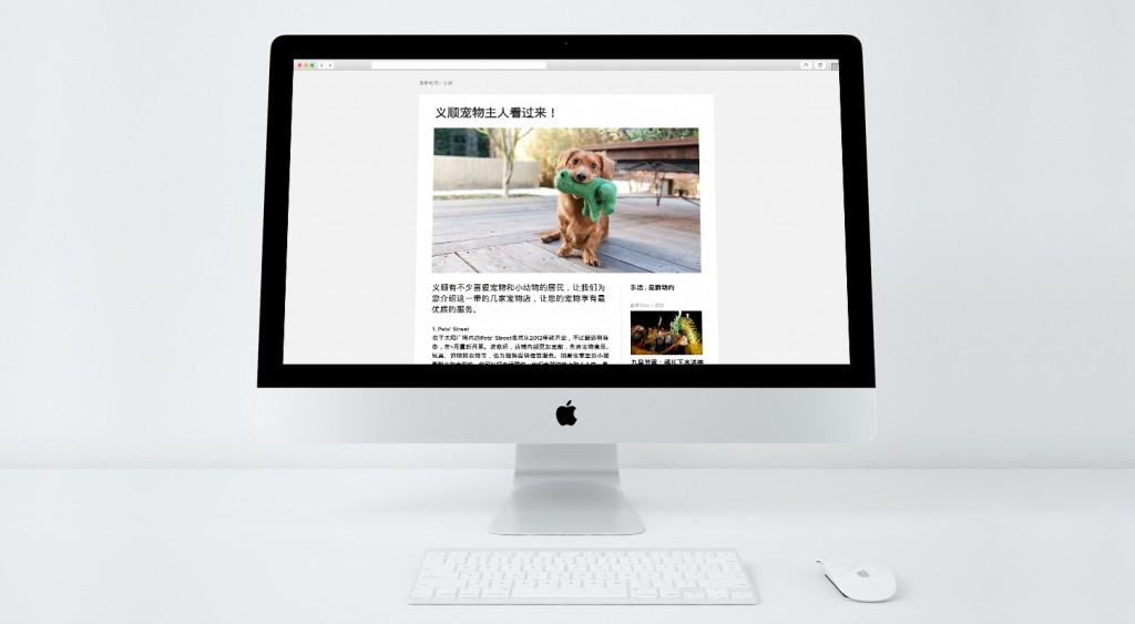 Nee Soon Chinese Website